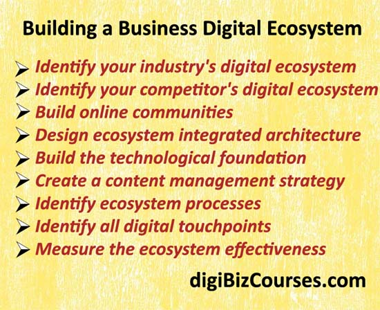 building digital ecosystem